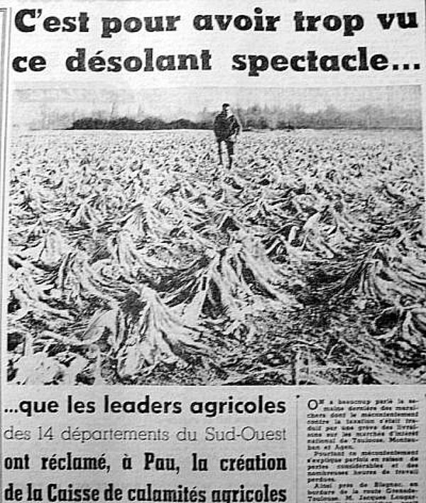 d�sarroi des agriculteurs fin janvier 63