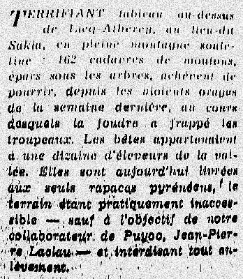 article sur les brebis foudroyees fin juillet 76