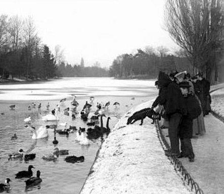 nourissage des oiseaux au bois de Boulogne en fevrier 1895