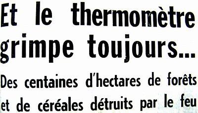 entete chaleur et incendie en juin 76