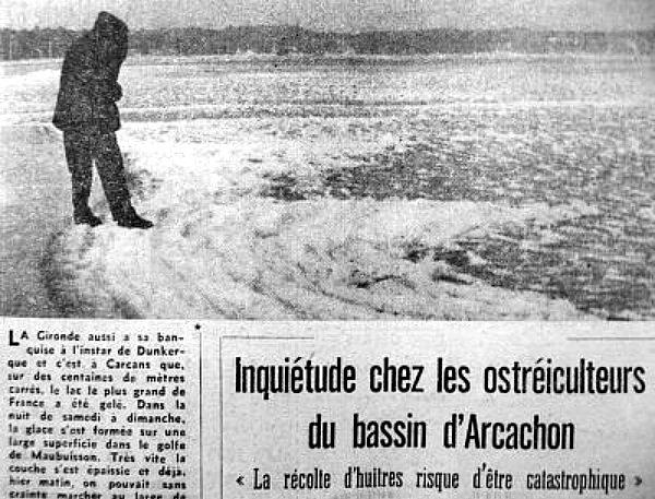 banquise girondine en janvier 63