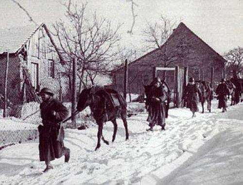Goumiers en Alsace janvier 1945