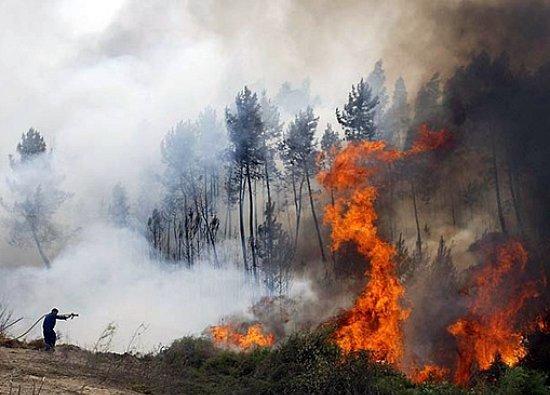 incendies au Portugal lors de la canicule d'août 2003 météopassion