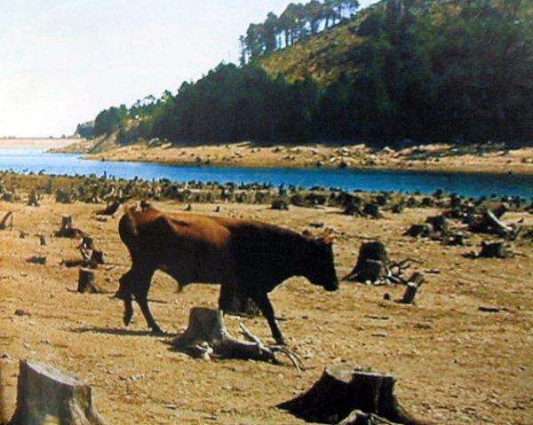 lac en Corse aout 2003