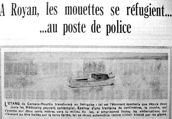 mouettes réfugiées au poste de police hiver 62-63