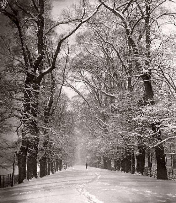 chute de neige durant l`hiver 1870 1871