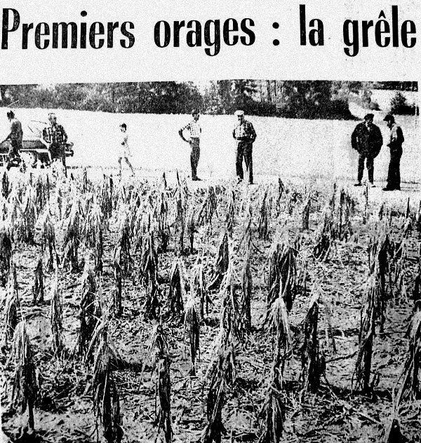 orage de grele 27 juin 1976