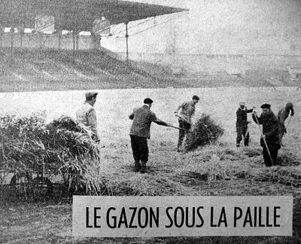 paillage d`une pelouse d`un stade de foot hiver 62-63