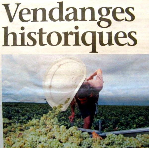 vendanges historiques aout 2003